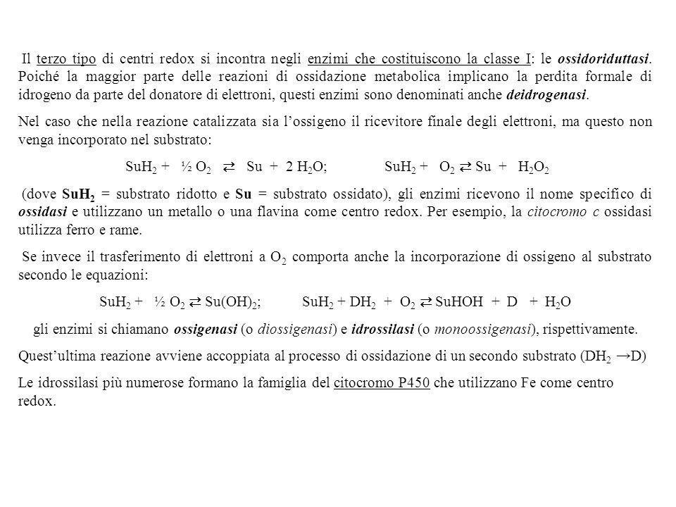 SuH2 + ½ O2 ⇄ Su + 2 H2O; SuH2 + O2 ⇄ Su + H2O2