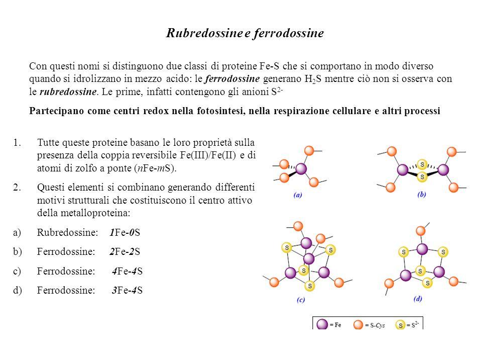 Rubredossine e ferrodossine