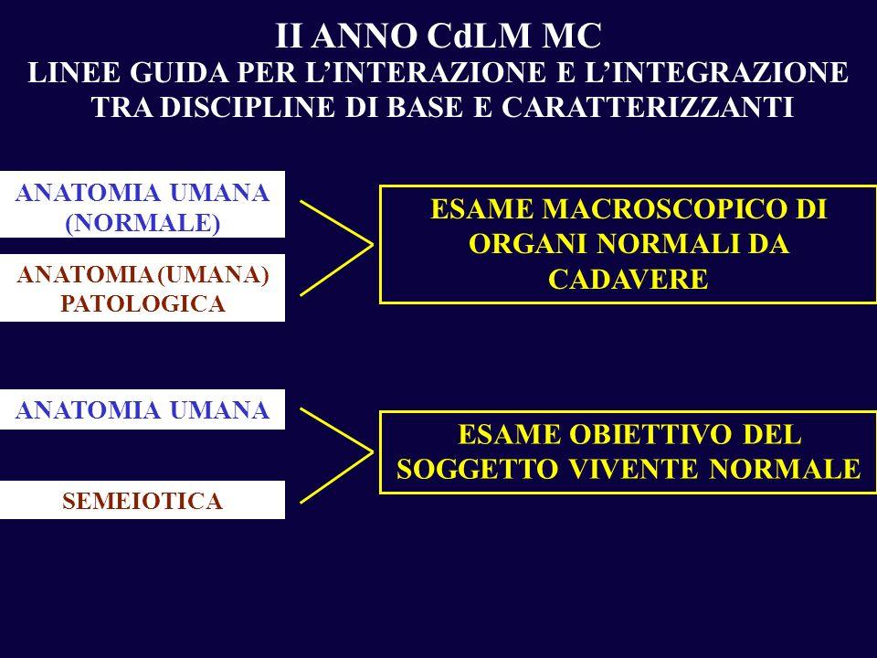 II ANNO CdLM MC LINEE GUIDA PER L'INTERAZIONE E L'INTEGRAZIONE