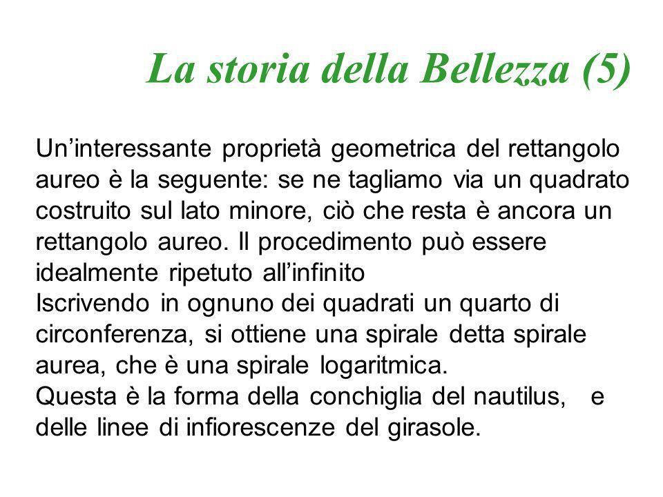 La storia della Bellezza (5)