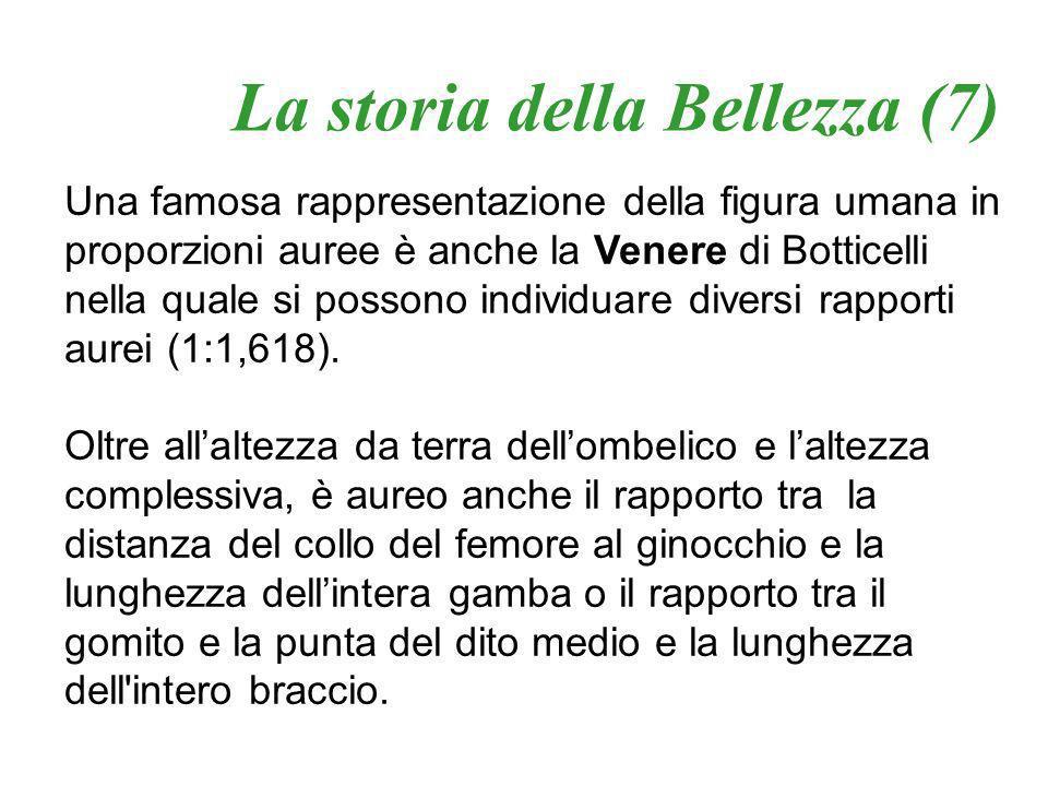La storia della Bellezza (7)