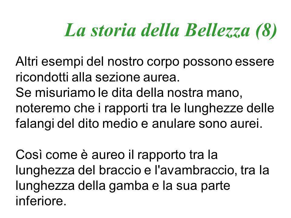 La storia della Bellezza (8)