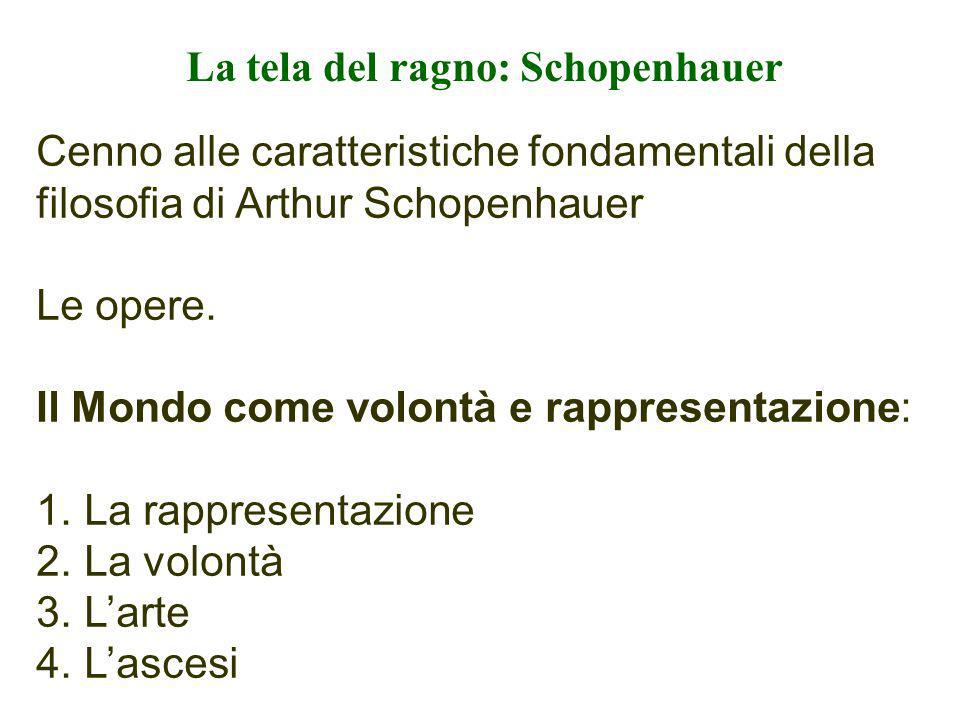 La tela del ragno: Schopenhauer