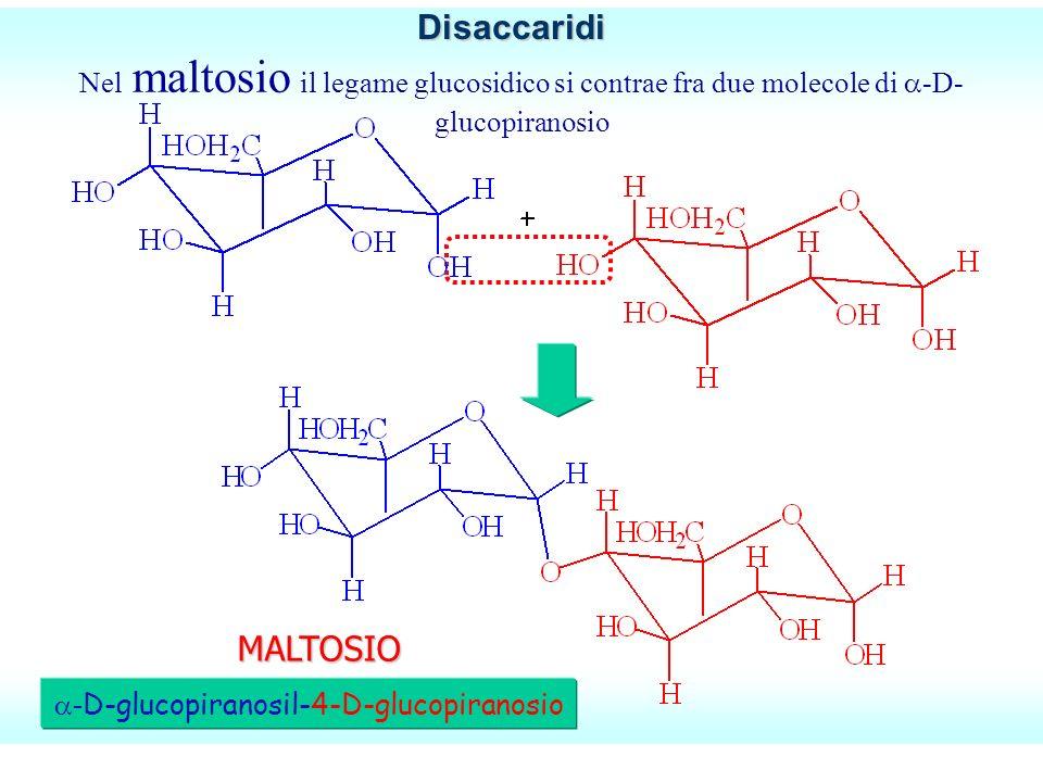 -D-glucopiranosil-4-D-glucopiranosio