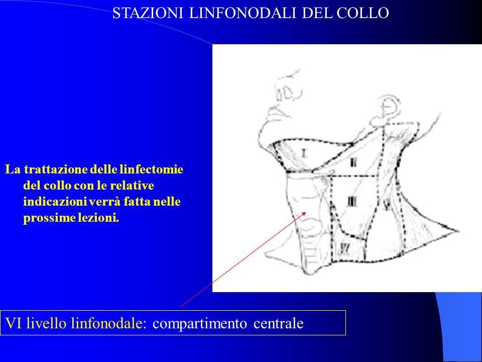 STAZIONI LINFONODALI DEL COLLO