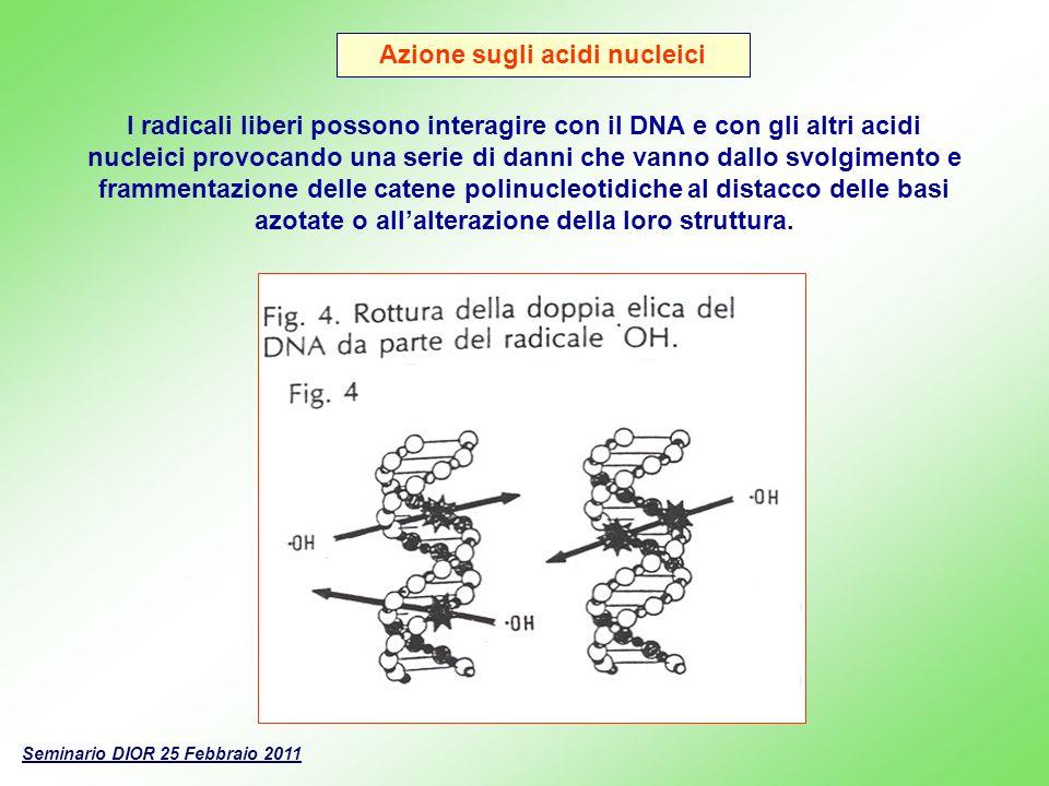 Azione sugli acidi nucleici