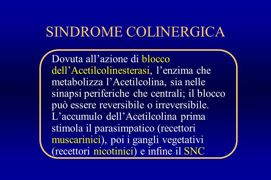 SINDROME COLINERGICA
