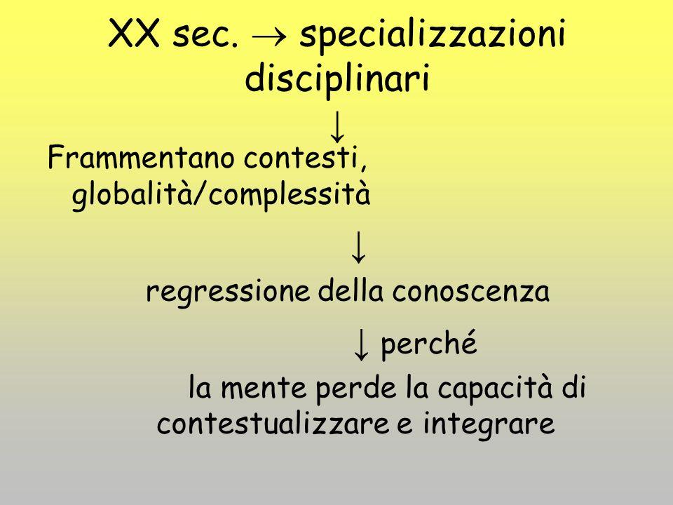 XX sec.  specializzazioni disciplinari ↓