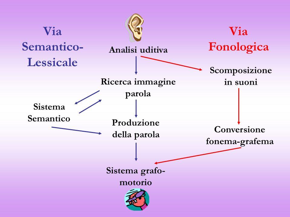 Via Semantico-Lessicale Via Fonologica