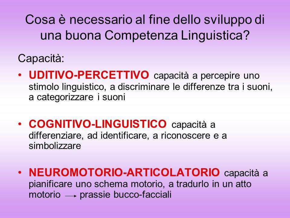 Cosa è necessario al fine dello sviluppo di una buona Competenza Linguistica