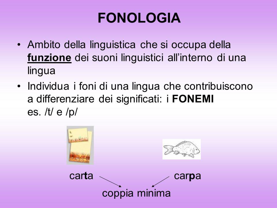 FONOLOGIA Ambito della linguistica che si occupa della funzione dei suoni linguistici all'interno di una lingua.