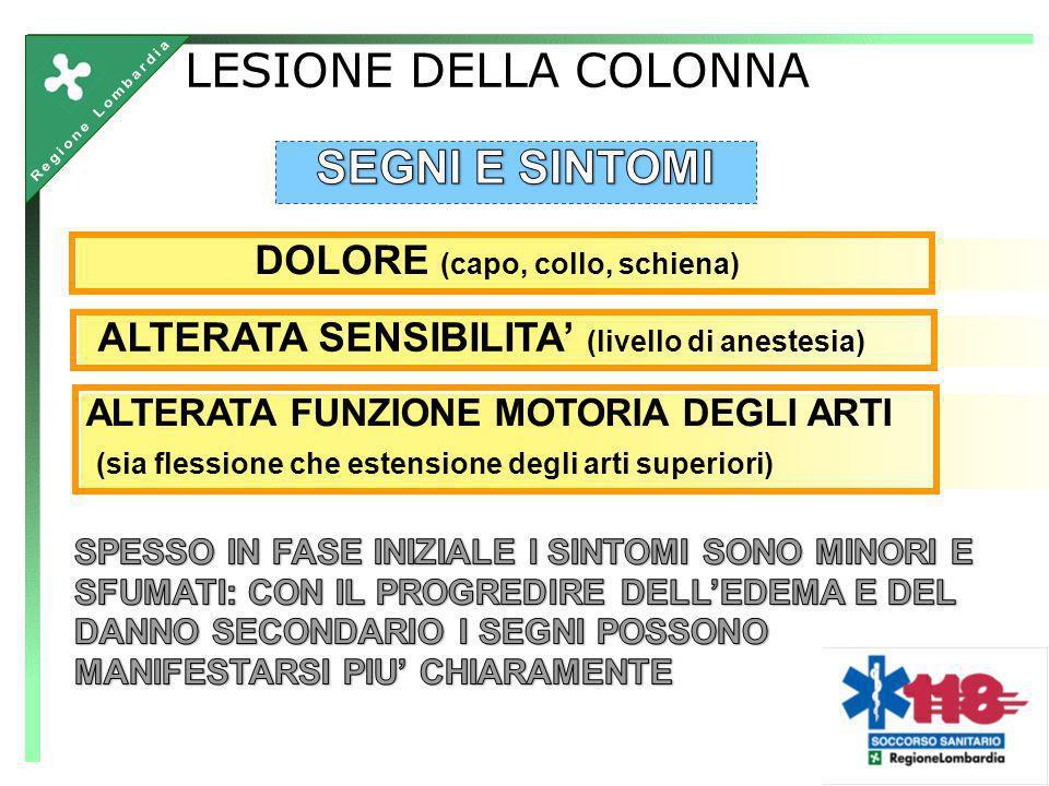 LESIONE DELLA COLONNA SEGNI E SINTOMI DOLORE (capo, collo, schiena)