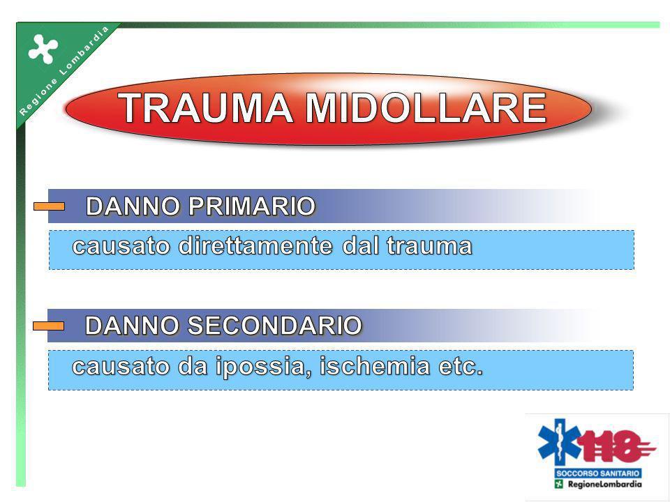 TRAUMA MIDOLLARE DANNO PRIMARIO causato direttamente dal trauma