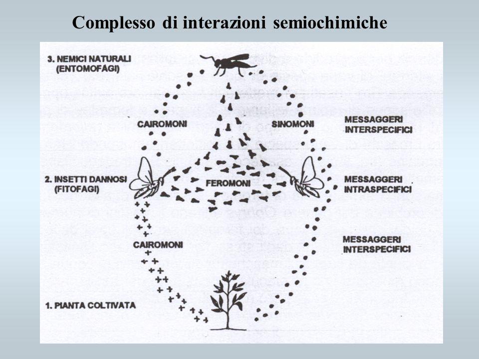 Complesso di interazioni semiochimiche