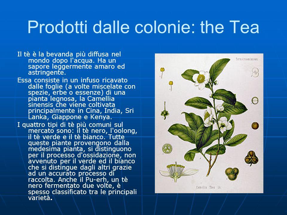 Prodotti dalle colonie: the Tea