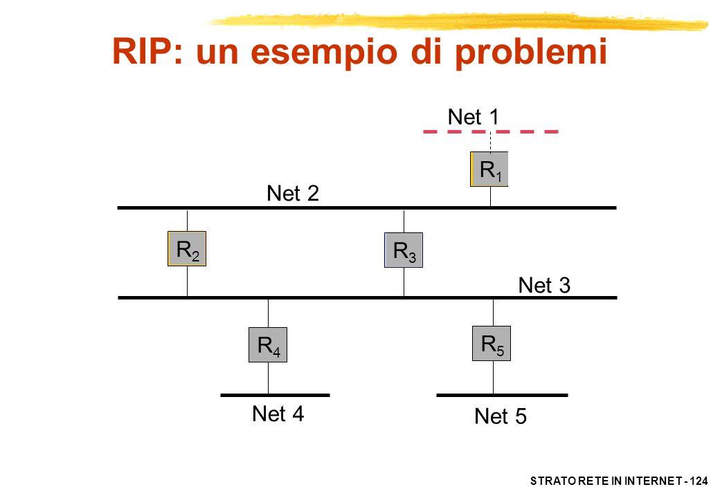 RIP: un esempio di problemi