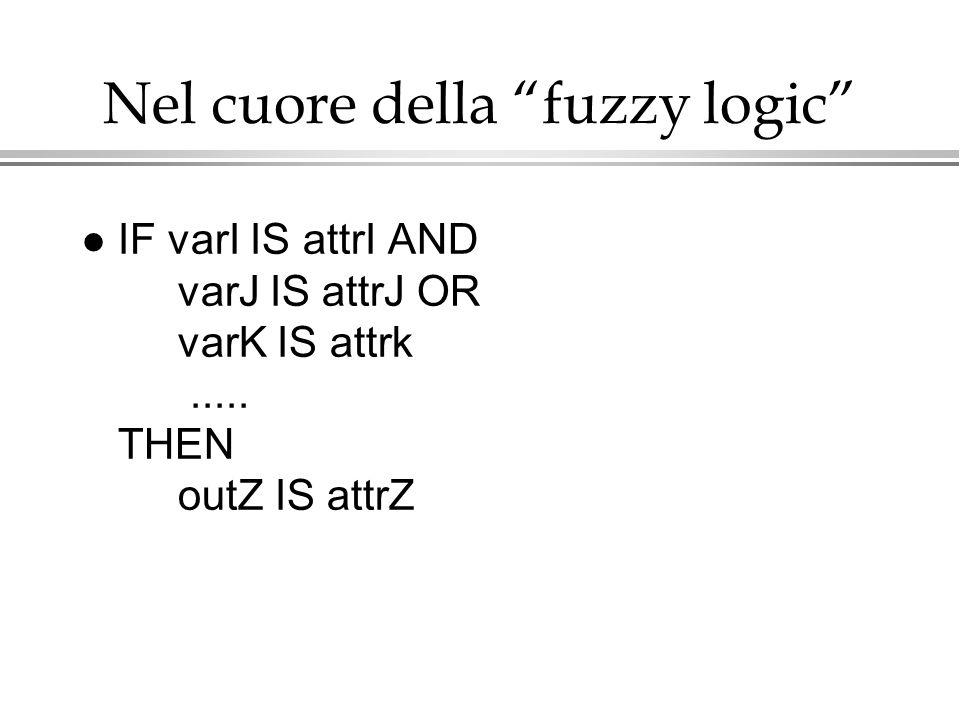 Nel cuore della fuzzy logic