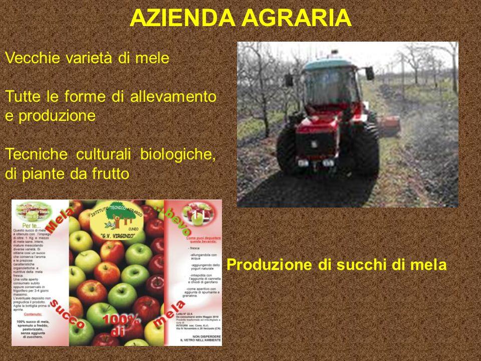 AZIENDA AGRARIA Vecchie varietà di mele
