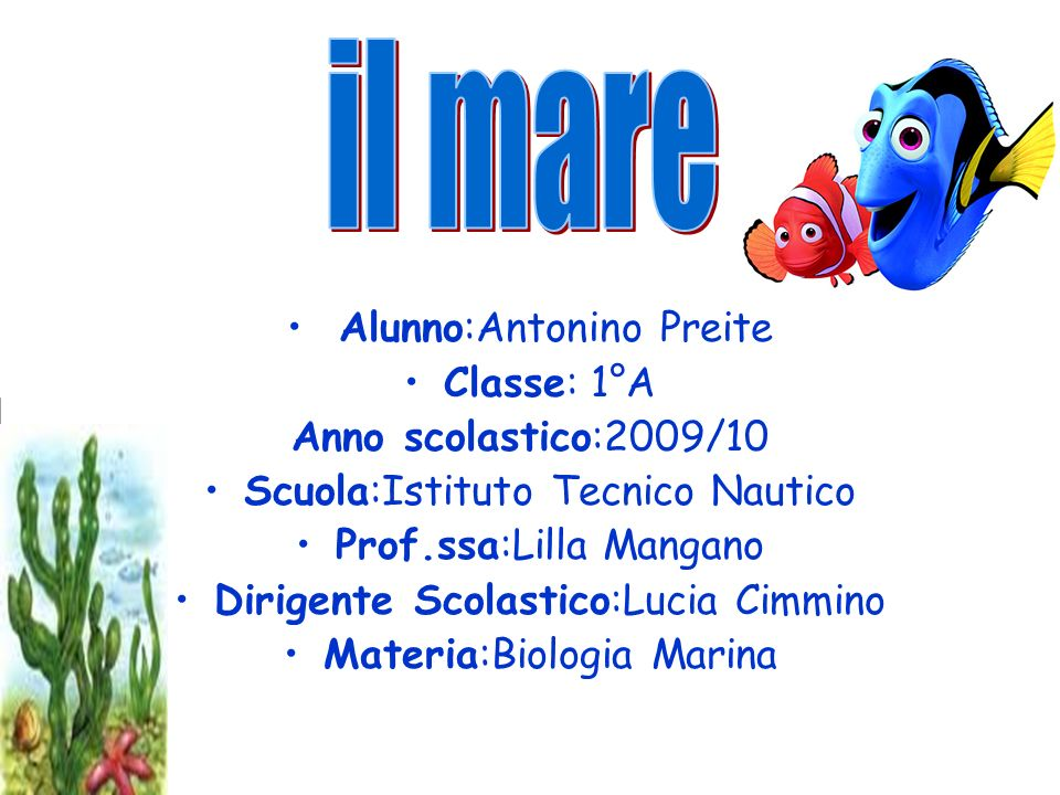 il mare Alunno:Antonino Preite Classe: 1°A Anno scolastico:2009/10