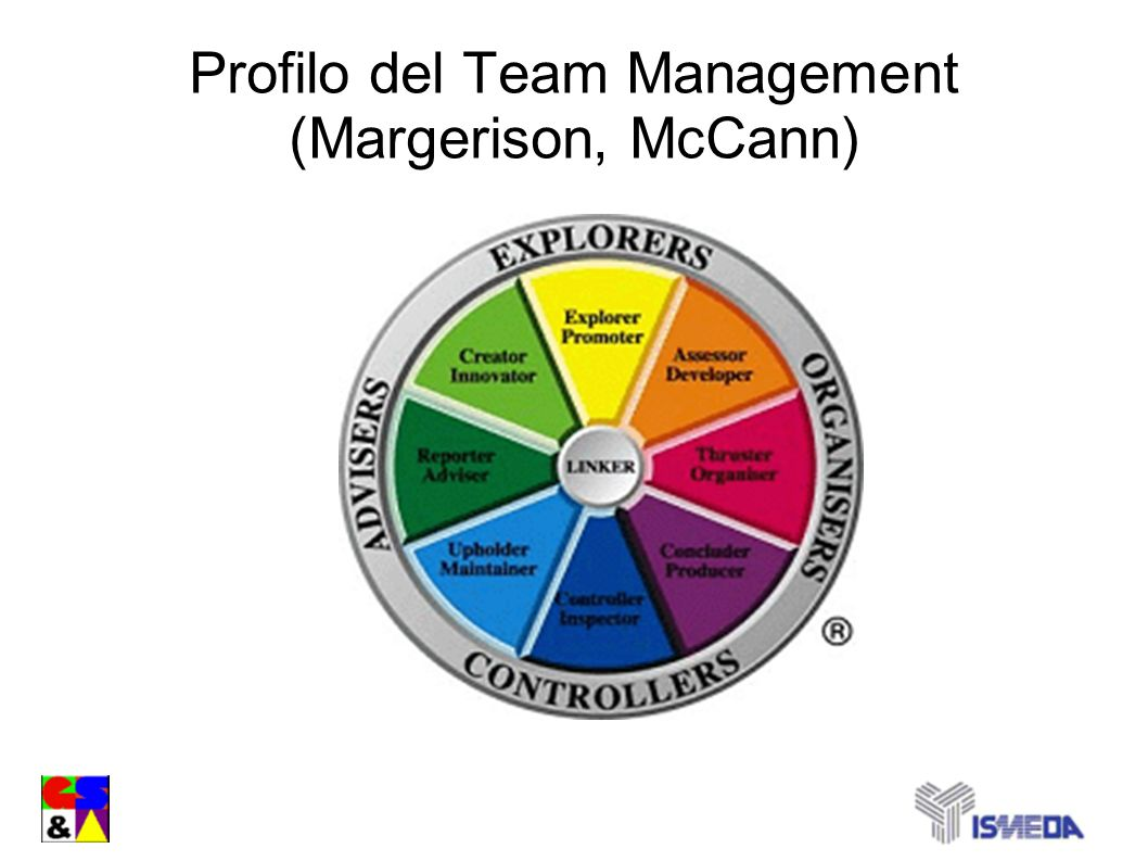 Profilo del Team Management (Margerison, McCann)