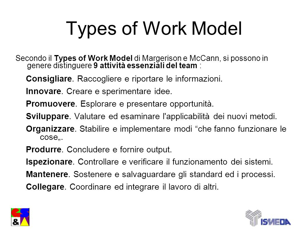 Types of Work Model Secondo il Types of Work Model di Margerison e McCann, si possono in genere distinguere 9 attività essenziali del team :