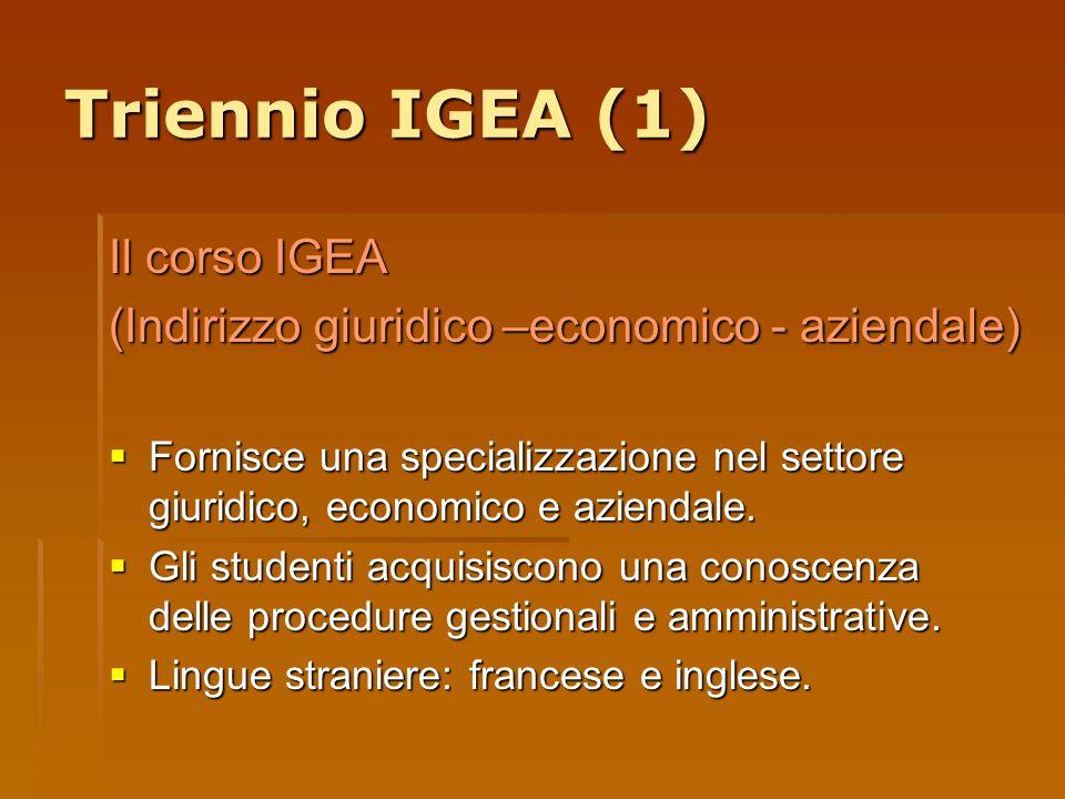 Triennio IGEA (1) Il corso IGEA