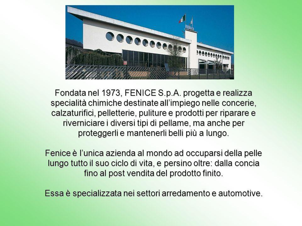 Fondata nel 1973, FENICE S.p.A. progetta e realizza