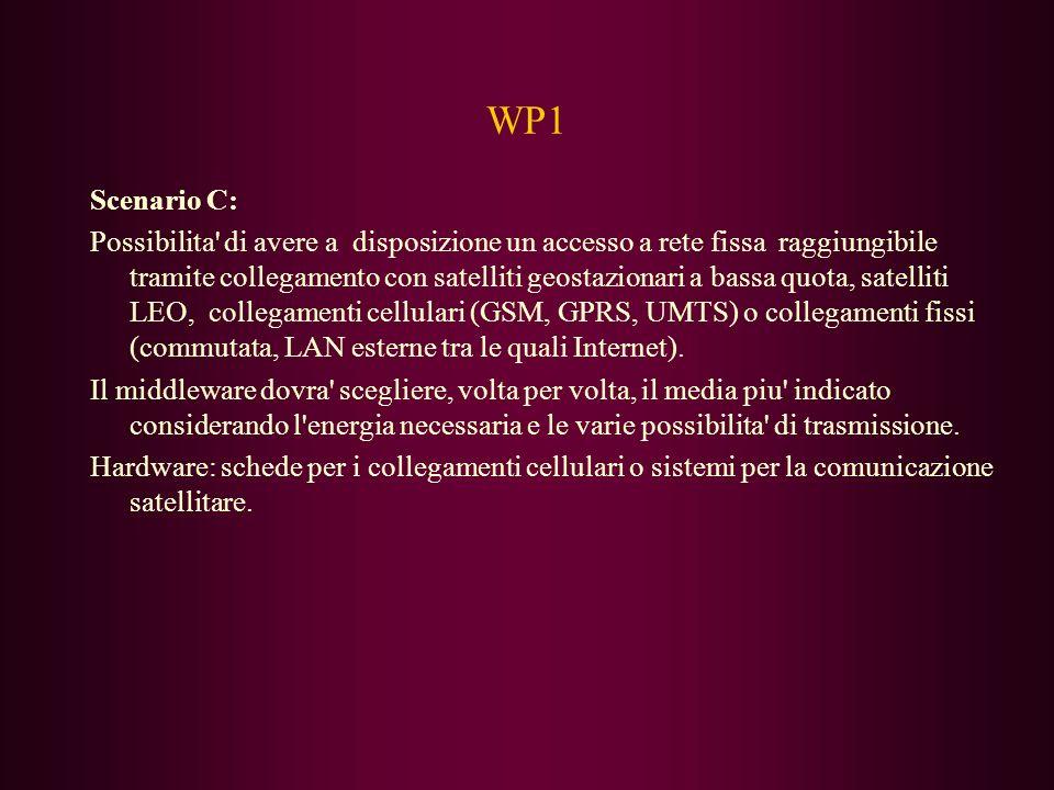 WP1 Scenario C: