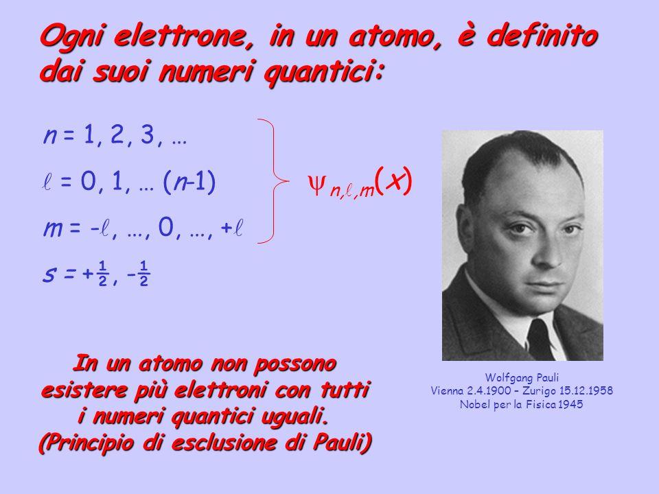 Ogni elettrone, in un atomo, è definito dai suoi numeri quantici: