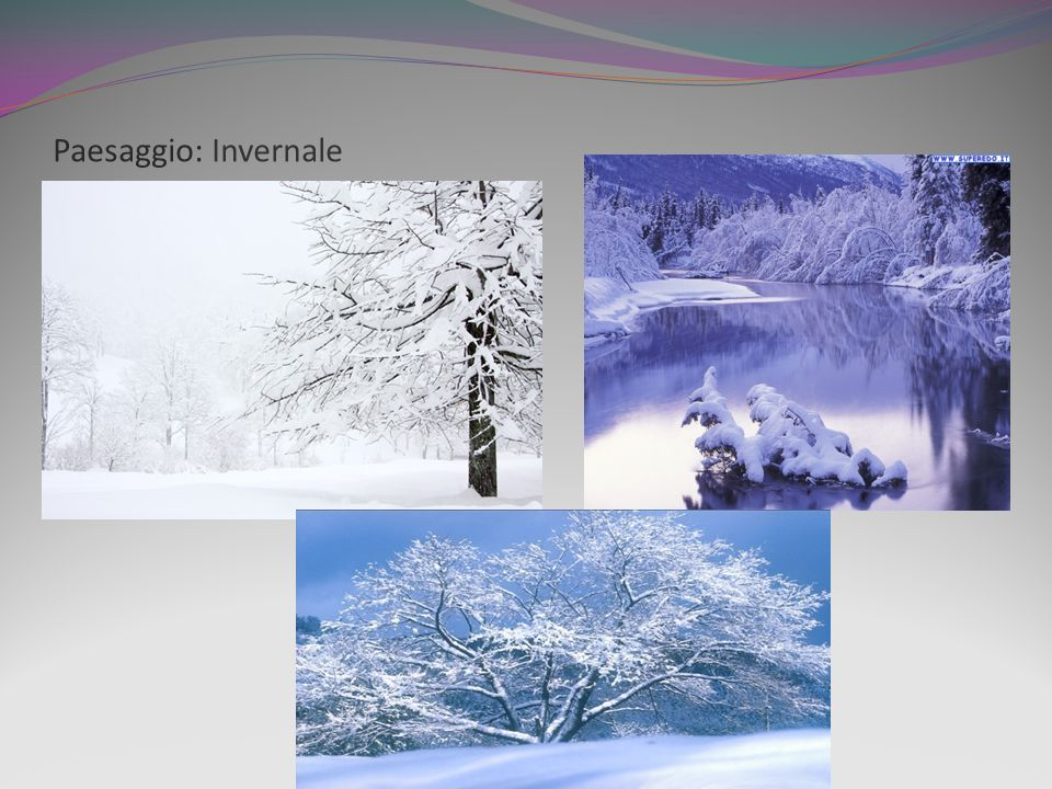 Paesaggio: Invernale
