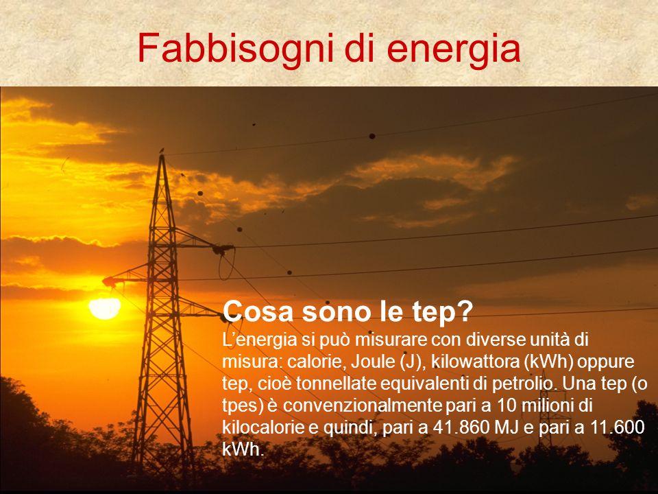 Fabbisogni di energia Cosa sono le tep