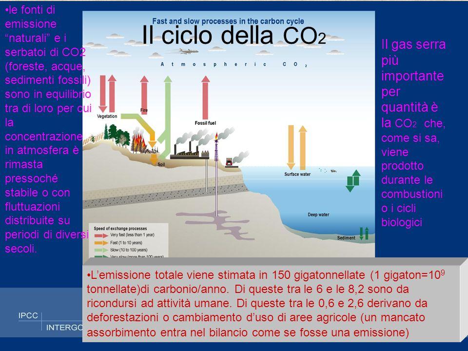 le fonti di emissione naturali e i serbatoi di CO2 (foreste, acque, sedimenti fossili) sono in equilibrio tra di loro per cui la concentrazione in atmosfera è rimasta pressoché stabile o con fluttuazioni distribuite su periodi di diversi secoli.