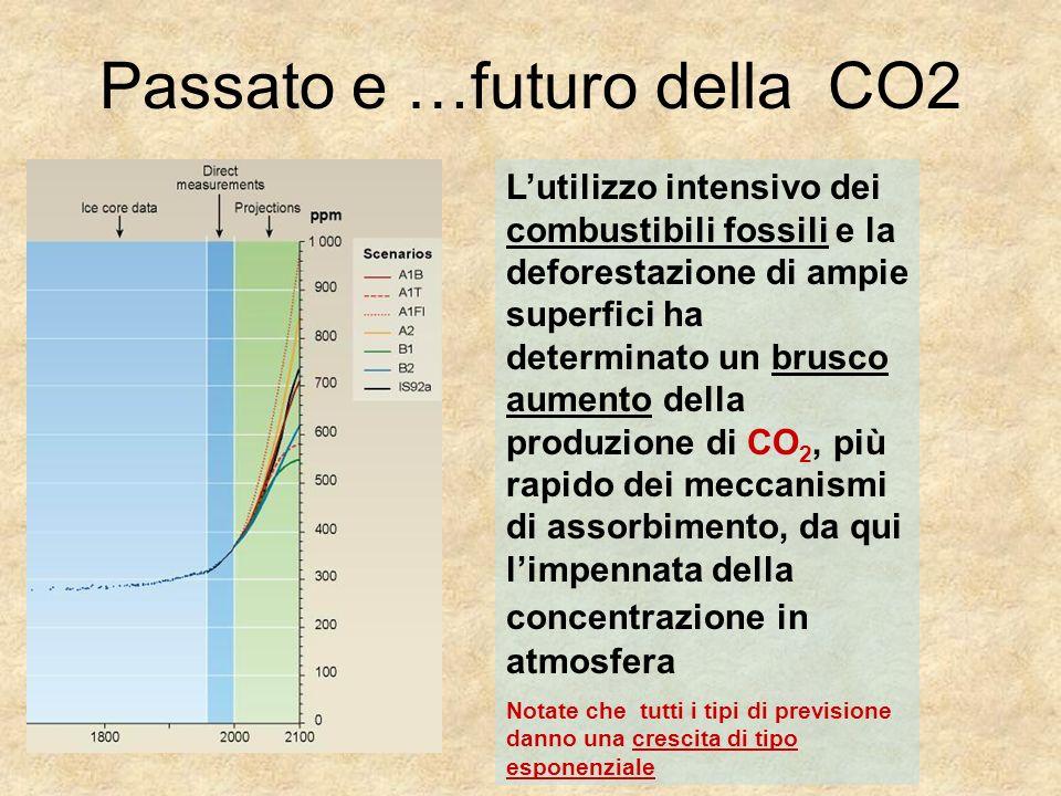 Passato e …futuro della CO2