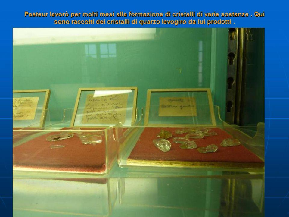 Pasteur lavorò per molti mesi alla formazione di cristalli di varie sostanze .