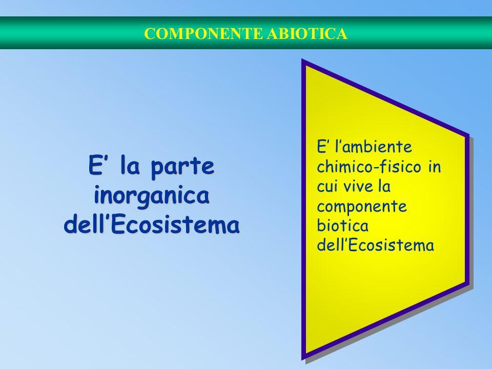 E' la parte inorganica dell'Ecosistema