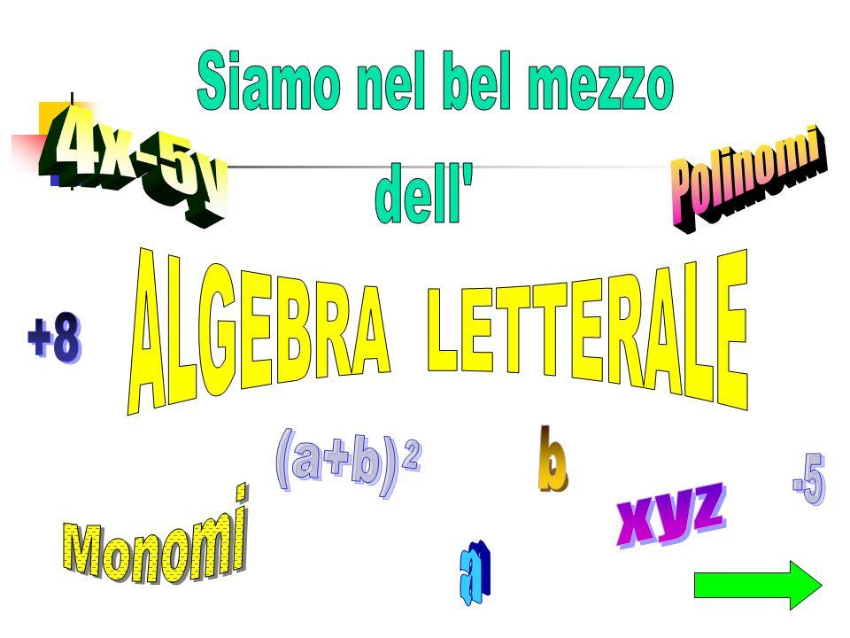 Siamo nel bel mezzo 4x-5y Polinomi dell ALGEBRA LETTERALE +8 b (a+b) 2 -5 Monomi xyz a