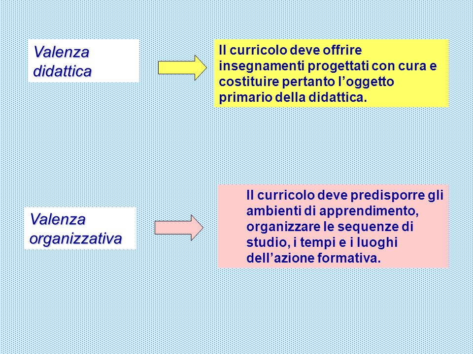Valenza organizzativa