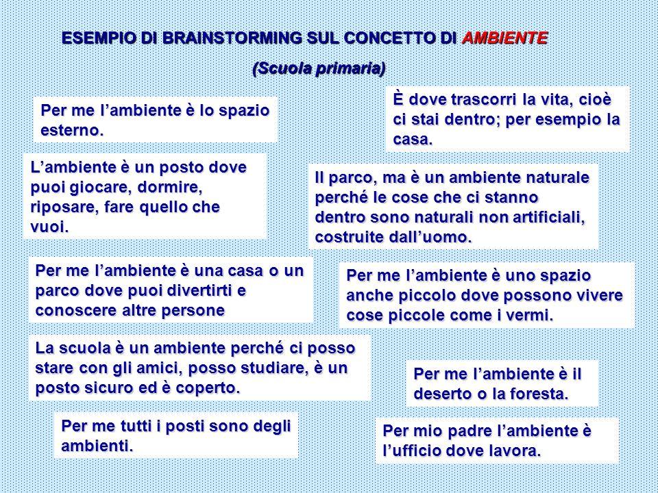 ESEMPIO DI BRAINSTORMING SUL CONCETTO DI AMBIENTE