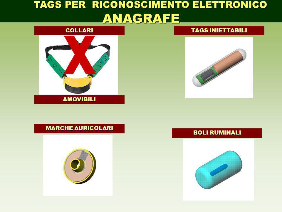 TAGS PER RICONOSCIMENTO ELETTRONICO ANAGRAFE