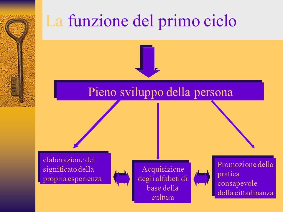 La funzione del primo ciclo