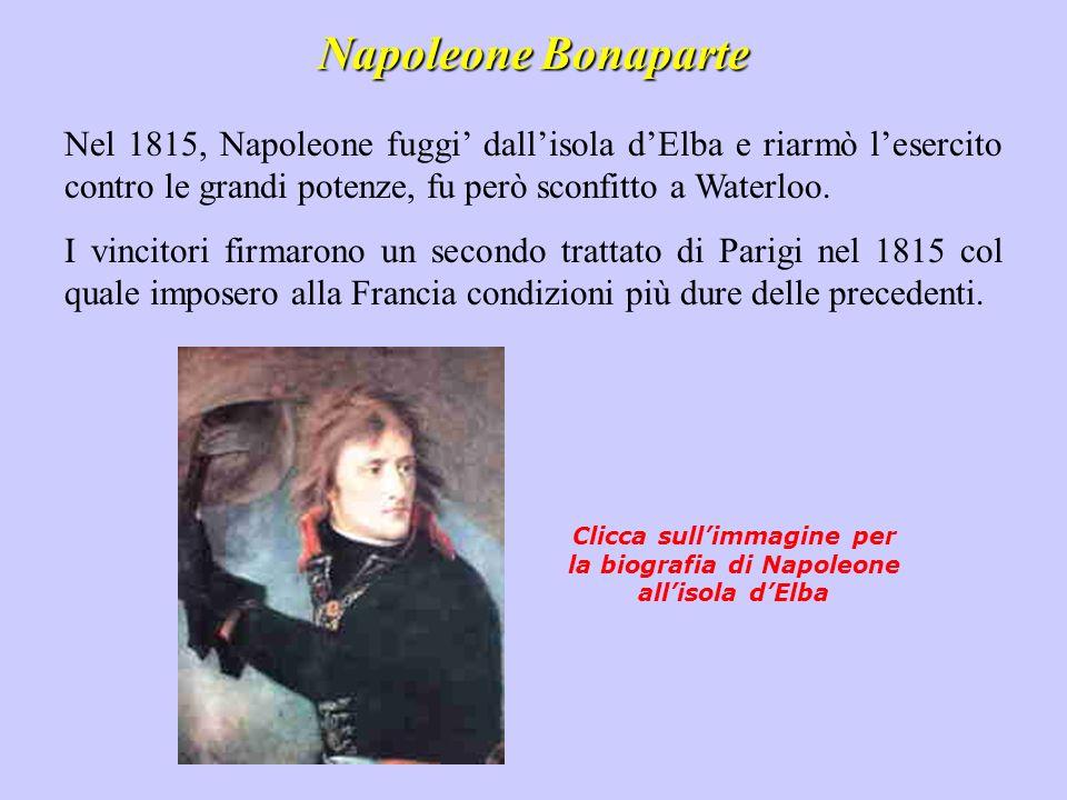 Clicca sull'immagine per la biografia di Napoleone all'isola d'Elba