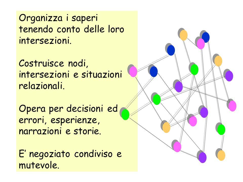 Organizza i saperi tenendo conto delle loro intersezioni.