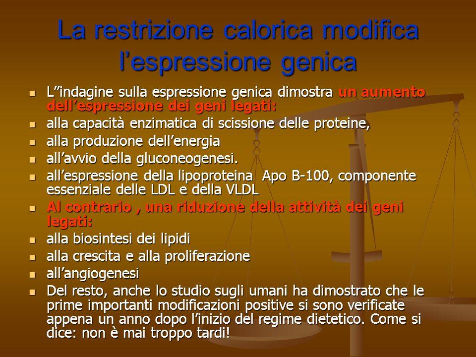 La restrizione calorica modifica l'espressione genica