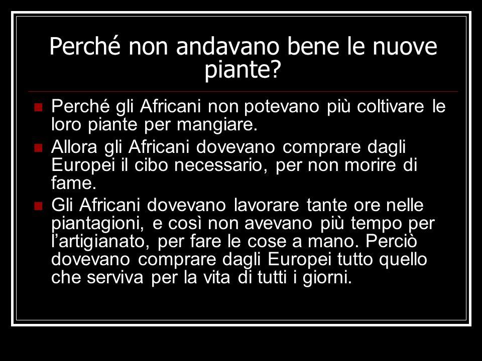 Perché non andavano bene le nuove piante
