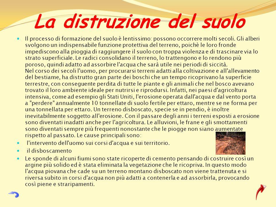 La distruzione del suolo