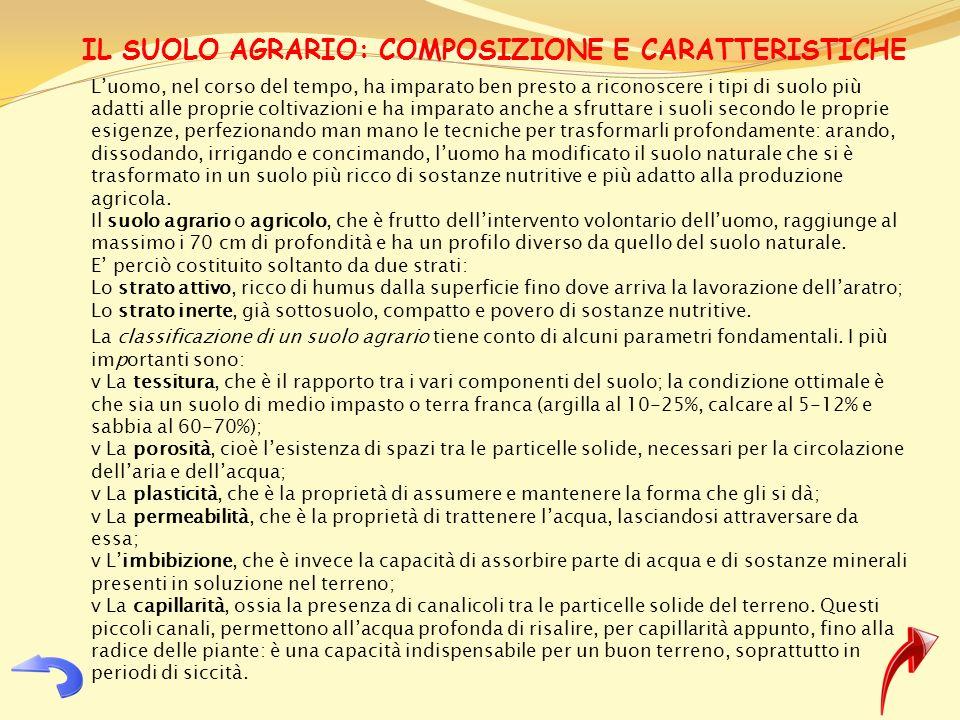 IL SUOLO AGRARIO: COMPOSIZIONE E CARATTERISTICHE