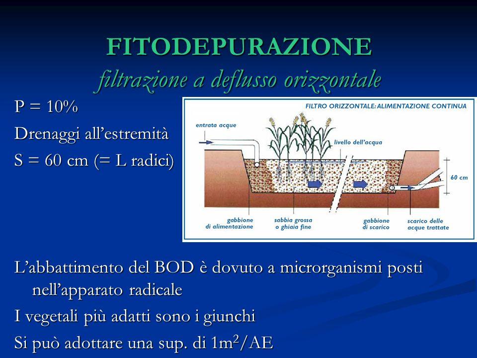 FITODEPURAZIONE filtrazione a deflusso orizzontale