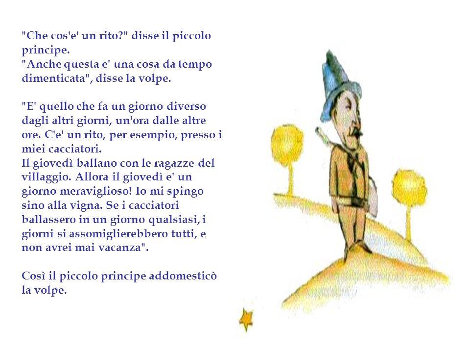 Favorito Il piccolo principe. - ppt scaricare UG59