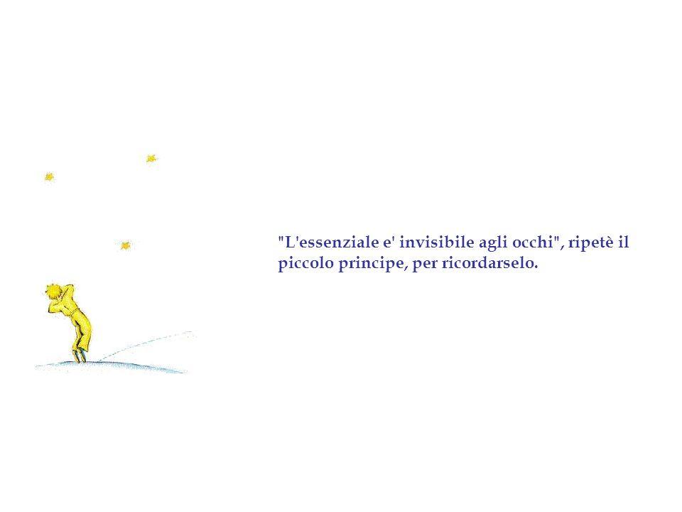 L essenziale e invisibile agli occhi , ripetè il piccolo principe, per ricordarselo.