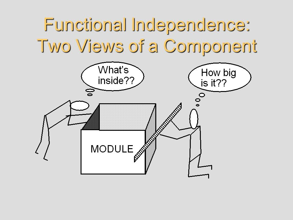 Functional Independence: Two Views of a Component